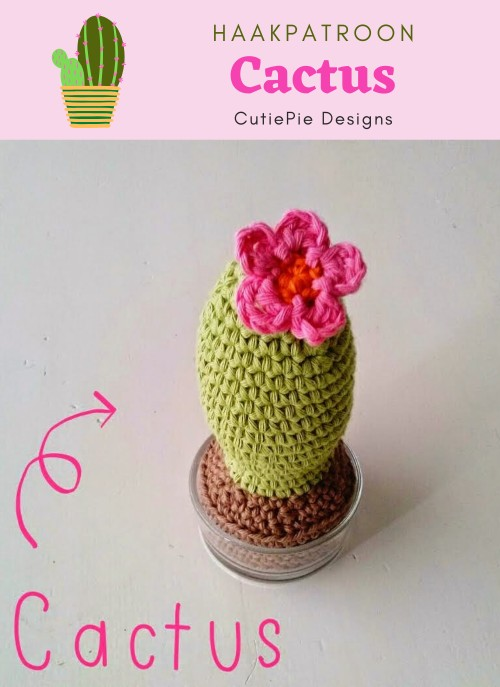 Crocheted cactus - CROCHET | 687x500