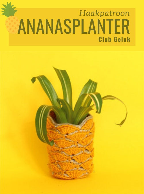 Haakpatroon Ananasplanter