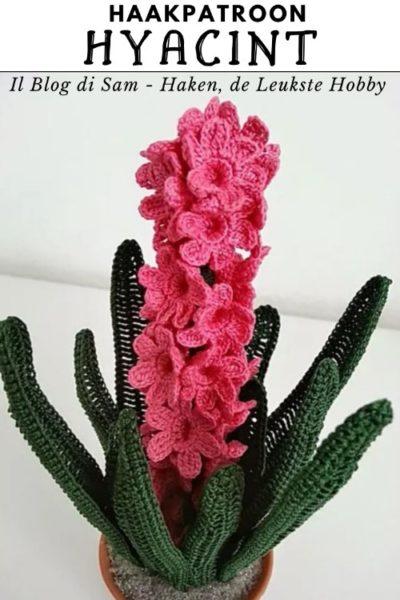 Haakpatroon Hyacint