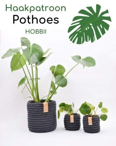 Haakpatroon Pothoes Haken