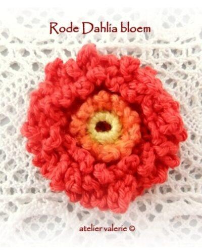 Haakpatroon Rode Dahlia Bloem
