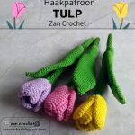 Haakpatroon Tulp