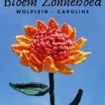 Haakpatroon Bloem Zonnehoed